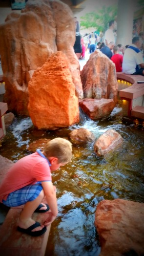 My little played threw pennies in the giant stream/water fall.
